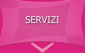05 servizi